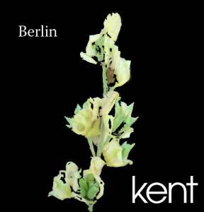 berlin-demo-kopia.jpg