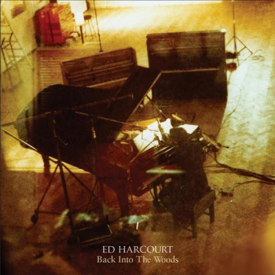 Ed Harcourt artwork